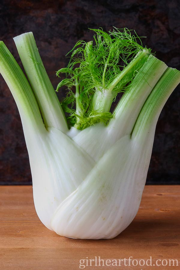 A photo of a fennel bulb.
