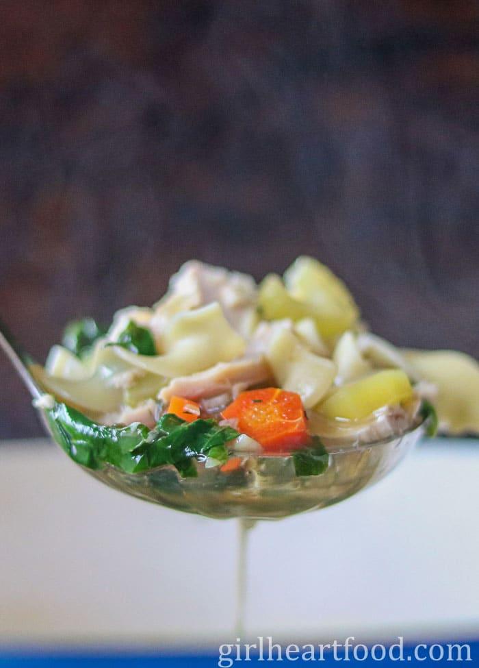 Ladle of chicken noodle soup.