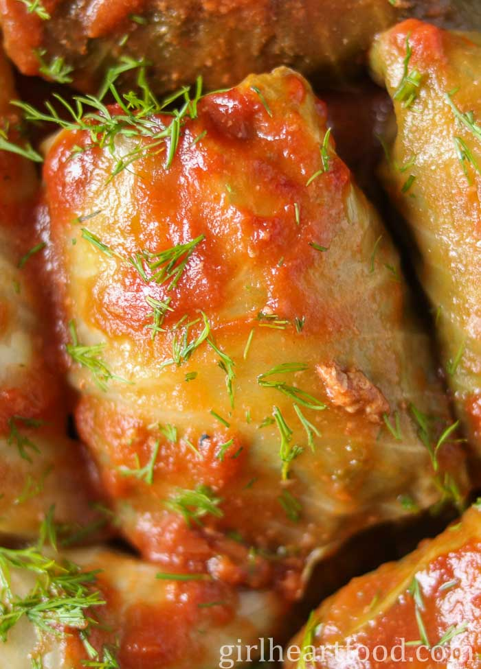 Close up of a homemade cabbage roll with tomato sauce and dill garnish.
