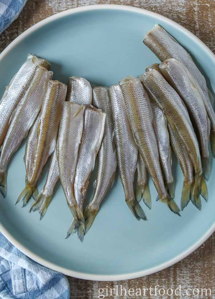Smelt fish on a blue plate before being cooked.