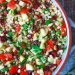 Close up of a dish of pearl couscous salad with vegetables, cranberries, pine nuts and parsley.