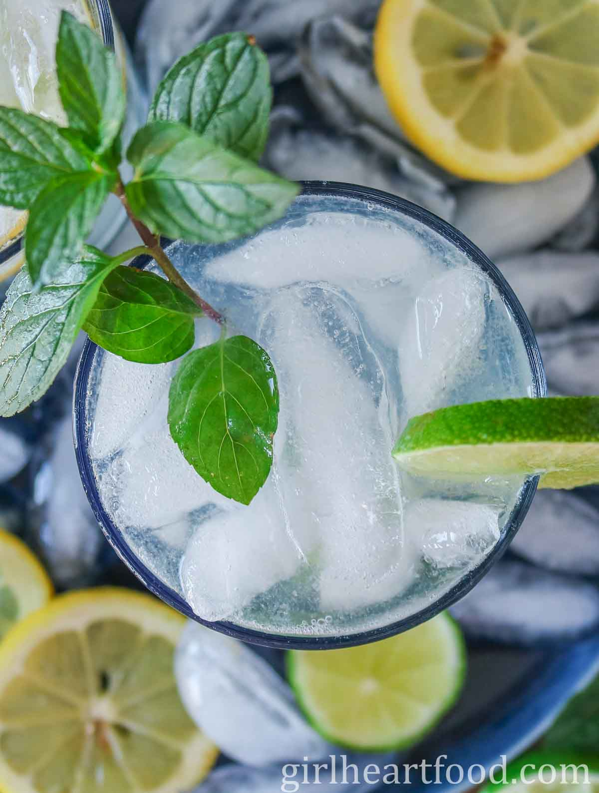 Overhead shot of a glass of icy vodka lime soda garnished with fresh mint.