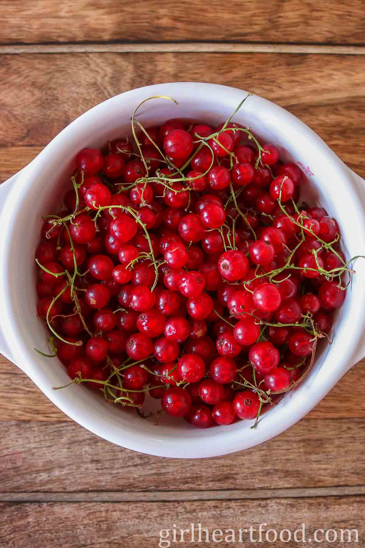 Fresh red currants in a white bowl.