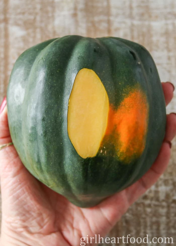 Hand holding an acorn squash with a slice peeled off of it.