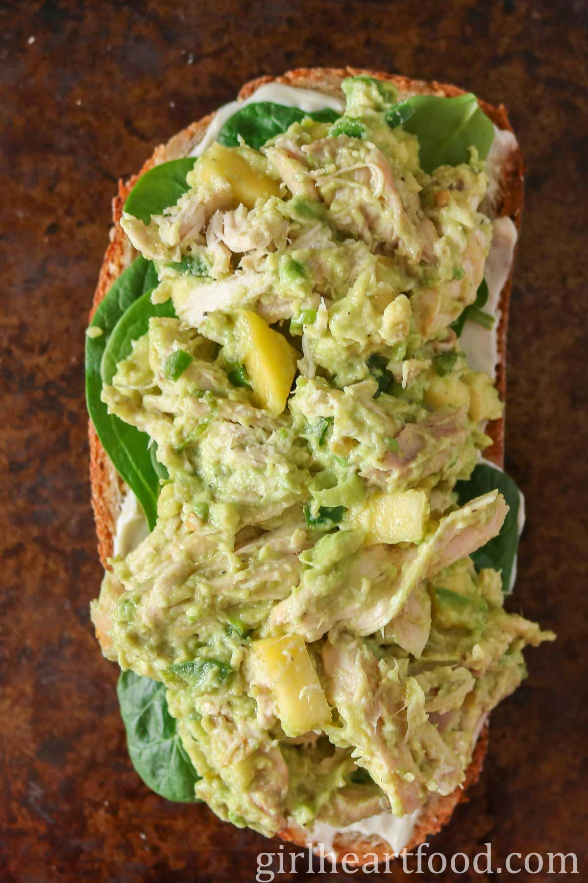Chicken avocado salad mixture on top of a slice of bread.