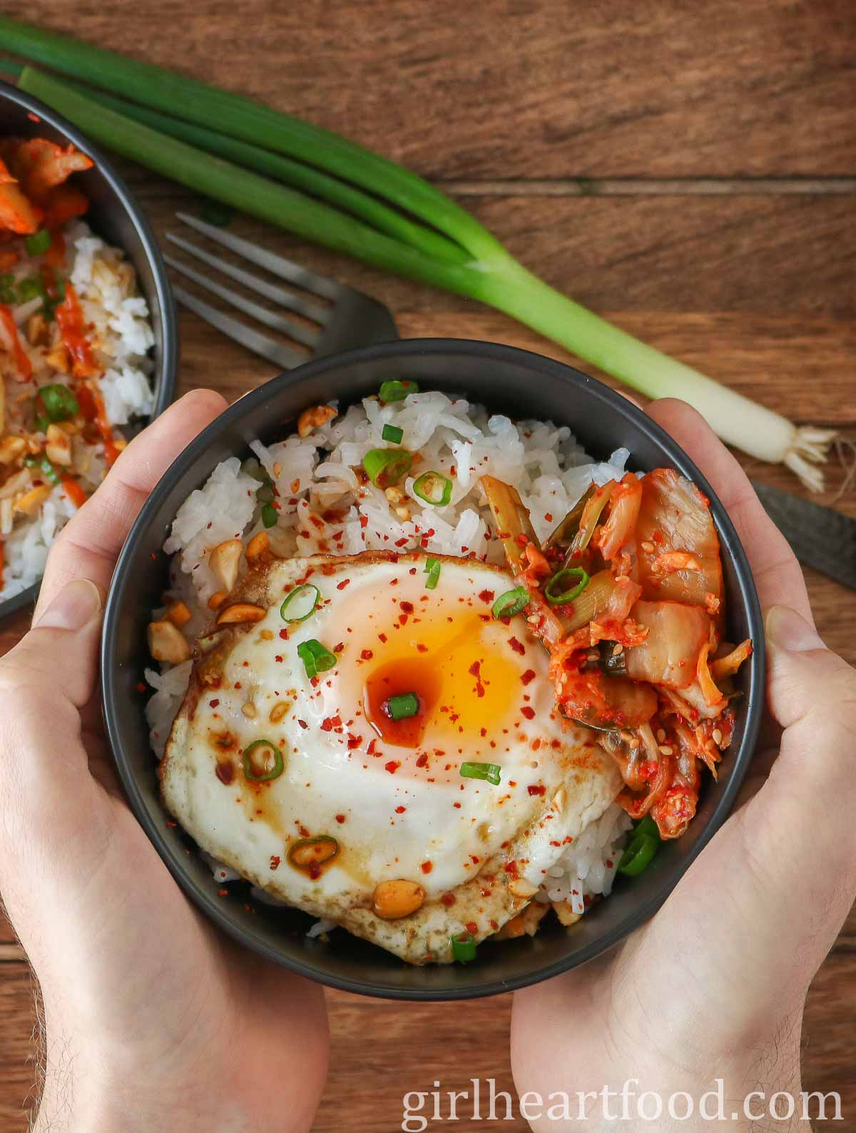 Two hands holding a fried egg and rice bowl.