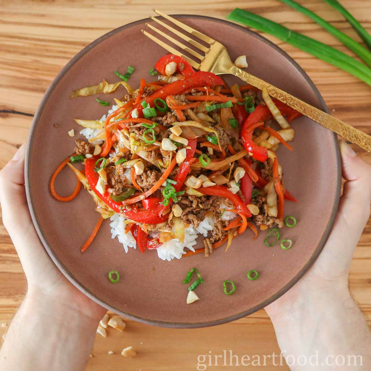 Two hands holding a plate of ground beef stir-fry and rice.