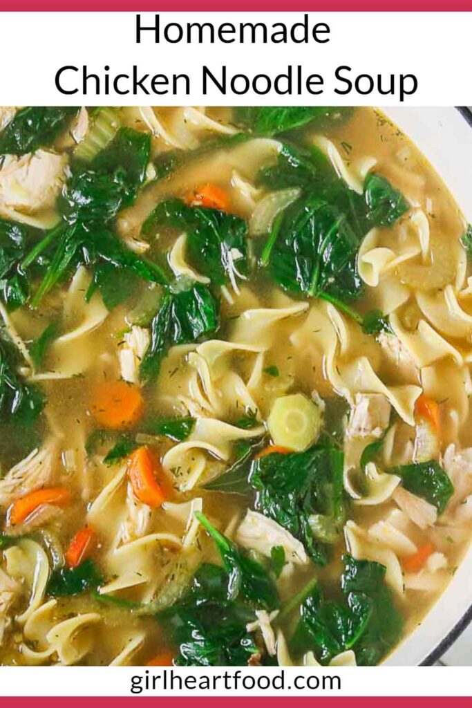 Close-up of a pot of homemade chicken noodle soup.